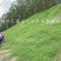 排水板 屋顶绿化用蓄排水板